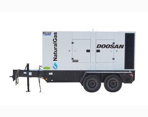 Doosan NG225 Natural Gas 178kW Generator
